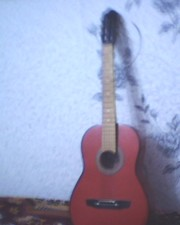 Профисионоя гитара